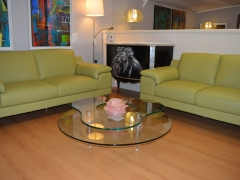 Italian Modern Green Leather Sofas with Special Glass Coffee Table Kilcroney Furniture Wicklow Furniture